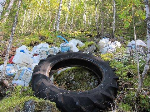 Begna: Naturvernforbundet i Valdres ryddet opp enorme mengder plastkanner og bildekk fra Begna elv og oppover skråningen. Blant annet ble mellom 50 og 75 AdBlue-kanner lokalisert og ryddet vekk.