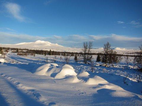 Kontrastar: Sjølv om 2020 har vore rekordmildt hadde det meste av Valdres eventyrleg vinterstemning i store delar av desember, som her mot Skaget på julaftan.