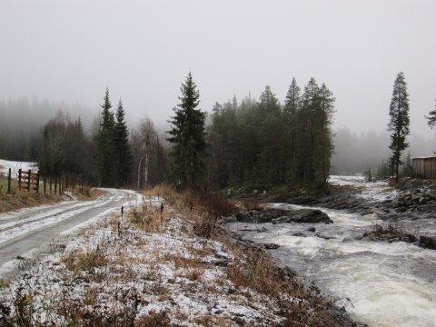 Mildt og grått: November var prega av lågt skydekke og lite snø, her langs Vinda 15. november.