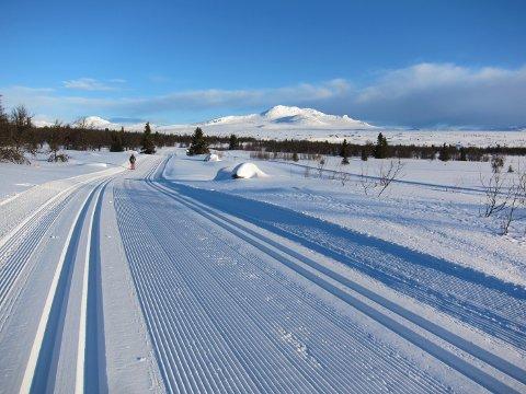 Store kontrastar: Sjølv om februar var langt mildare enn normalt var det likevel flotte skitilhøve i fjellet. Her mot Skaget, i løypenettet til Yddin og Javnlie løypelag.