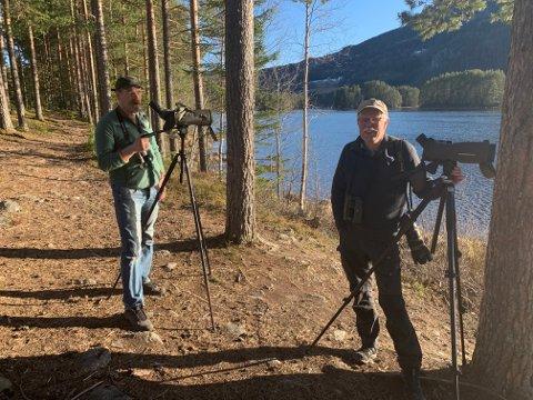 Ornitologene  Rune og Trond Øigarden på jakt etter fugler  de kan fotografere.
