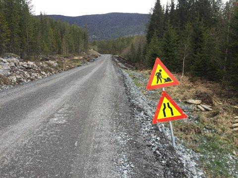 Var ille: Fylkesveg 2446, tidligere 220, mellom Sundvoll bru og Reinli skal få ny asfalt i løpet av 2020. Det er NCC som har fått kontrakten.