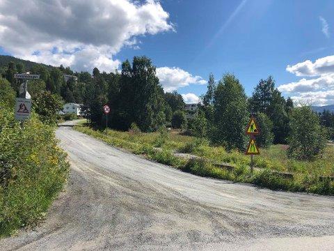 GRUSVEI: Sylvsmedvegen har i alle år vært grusvei. Nå blir det asfalt.