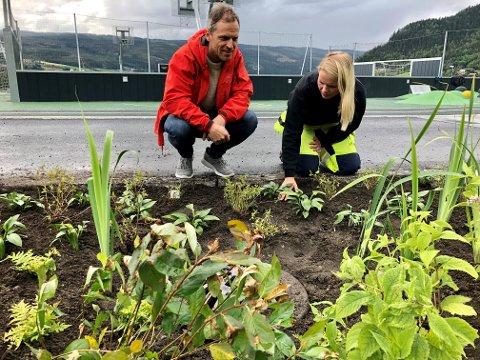 Rolf-Erik Poppe i Nord-Aurdal kommune har hatt ansvaret for planteplanen på NAUS. Her sammen med Åse Steindebakken fra Land anleggsgartner, som har utført jobben.