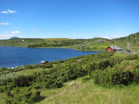 IDYLLISK: På Tansbergstølen i Øystre Slidre sist i juni.
