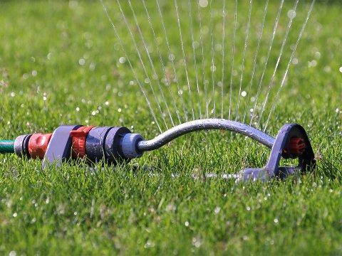 VANNLEKKASJE: Vannlekkasje gir vanningsforbud i nesten hele bygda.