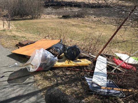 FORSØPLING: På dagtid fredag har noen ifølge ekteparet Aaraas kastet fra seg en dynge søppel ved p-plassen nær Årosbrua.