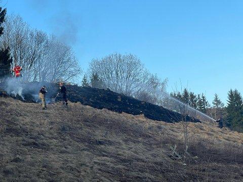 GRESSBRANN: Det er sendt ut farevarsel om stor brannfare. Fredag kveld var det en gressbrann i hellingene bak Li skole og opp mot Coop Prix på Slattum. Brannen ble raskt slukket.