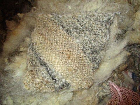 Ull kan strikkes rett fra fellen.