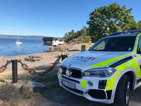 Redningsskøytene RS Klaveness Marine og RS Uni Oslofjord, politibåt, brannbåten Redningen fra Oslo og en brannbåt fra Asker og Bærum brannvesen, et Sea King helikopter, samt flere private fritidsbåter deltok i søket etter den savnede mannen.