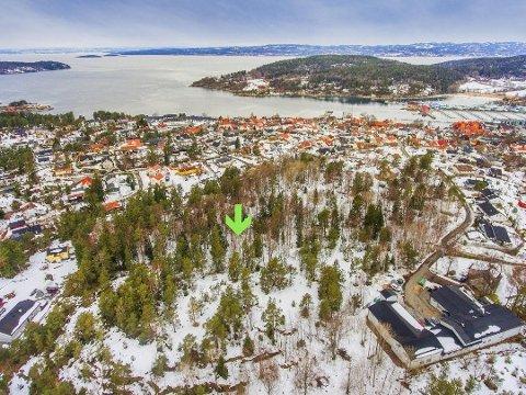 FORTSATT BOLIG: Alicenborg i Son vil fortsatt være regulert til boligformål. Et enstemmig formannskap gikk i mot rådmannens innstilling om å omregulere eiendommen til LNF-område.