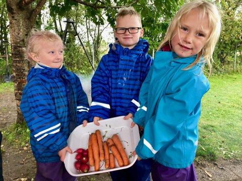 HØSTMAT: Femåringene Hannah Rygg, Storm Alexander Andresen og Sonja Grydeland Russel i Vestby naturbarnehage Sundbytoppen.