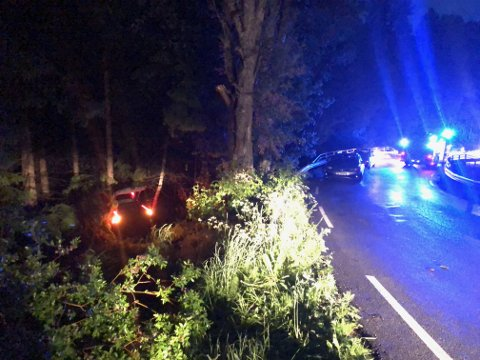 Det var fem personer i bilen som havnet i grøfta i Garderveien natt til lørdag.