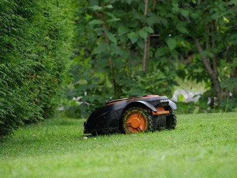 Robotgressklippere har vært kriminelt populære i sommer. (Foto: If)