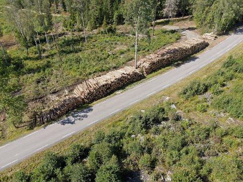 VÆR OBS: Tømmerhogsten i Prestegårdsskogen ved Pepperstad i Vestby er ferdig. Men uttransporteringen av tømmeret vil pågå en stund til. Det betyr at bilister langs Hvitstenveien må fortsette å tilpasse farten.