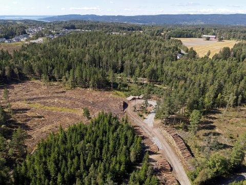 Det aller meste av skogområdet midt i bildet skal nå bygges ut med boliger.
