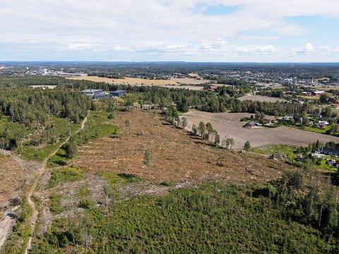STORE PLANER: Her, i Prestegårdskogen, ser Wessel Eiendom, Brødrene Thomassen og Clemens Eiendom for seg mellom 350 og 400 familieboliger. Øverst i høyre hjørne ser vi Vestby sentrum.
