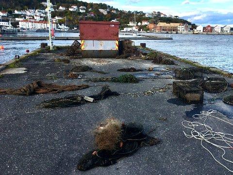 Risør Undervannsklubb og Risør akvarium fant 216 redskaper under aksjonen sist helg.