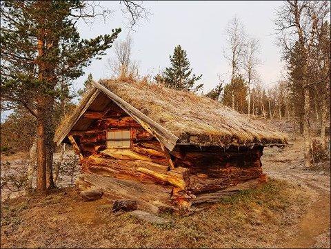 """Sametinget bevilger 165.000 kroner til å restaurere den 150 år gamle """"Tjærvedbrakka"""" i Beiarn. Hytta har tidligere blitt brukt som familiehytte av familien Koch."""