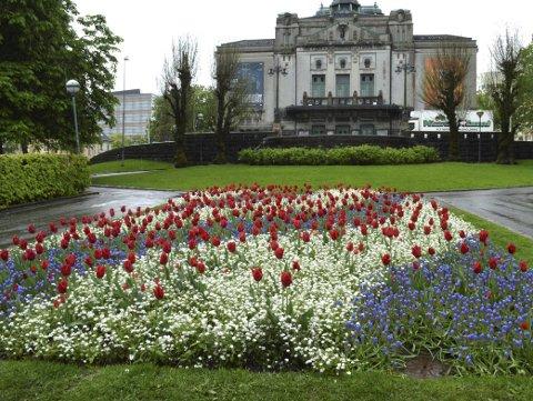 Å ta en liten stans, kikke på blomstene og fargegleden. La det synke inn. Snart kommer sommerblomstene her i parken. (Foto: TOM R. HJERTHOLM)