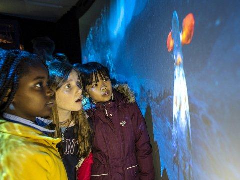 Disse femteklassingene fra St. Paul kikker interessert på utstillingen Dyphavet. (Fra v.) Harriet Peter, Beatrice Skudal og Clara Nguyen (10).