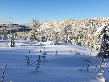 Slik ser det ut på Lauvkollen i Sande. I løpet av de to siste månedene har det kommet over halvannen meter snø.