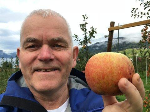 FOR STORT: Stein Harald Hjeltnes forskar på frukt på Njøs i Leikanger. Her med ei saftig og søtt Aroma-eple som går i saftpressa.