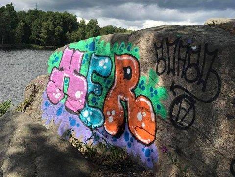 REAGERER: Lørdag oppdaget en turgåer denne «dekoren» ved 3. dam i Fredrikstadmarka. Han reagerer sterkt på at dette er gjort i marka, og håper kommunen anmelder forholdet.