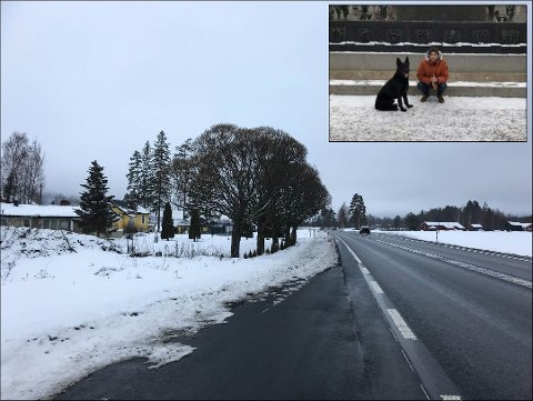 DRAMATISK: Familiehunden Faust forsvant fra hjemmet her ved E16 på Skarnes. Midt i leteaksjonen måtte Mohammed Maazouzi og kona Rajae kjøre til sykehuset. Foto: Martha-Lill Nordby Hansen/privat