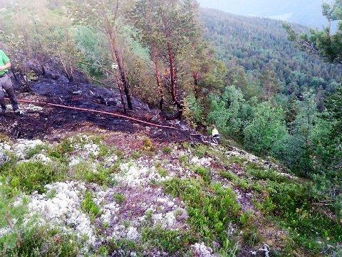 SKOGBRANN: Brannmannskapene har her slukket skogbrannen som torsdag startet ved Åsårberget etter lynnedslag. Mellom 200 og 300 kvadratmeter med skog ble svidd av.