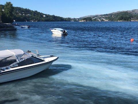 KOLNES: Forurenset vann fra avløpene rundt Kolnes går her rett ut i fjorden (10.07.18).