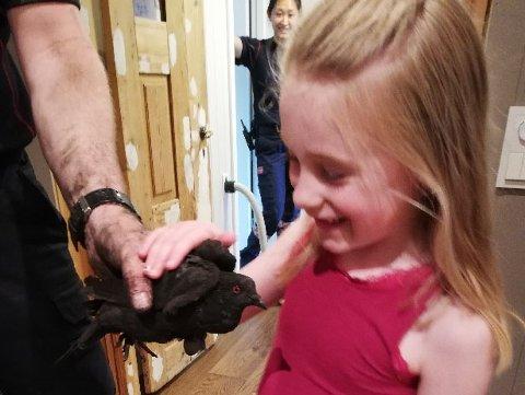 Ringte: Det var datteren Elena Hafslien som insisterte på at brannvesenet måtte komme. Det gjorde de og fikk til slutt reddet duen.