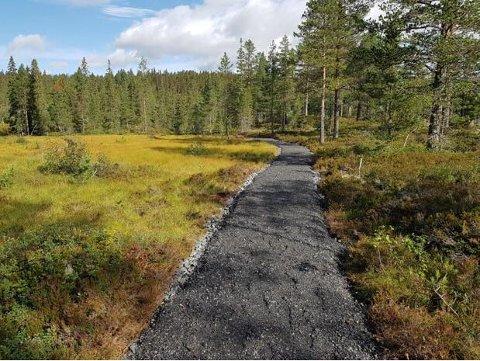 LØYPE: En liten del av den nesten 2 kilometer lange nye løypa.