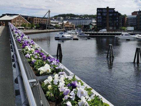 Sommer: Godværsperioden er så vidt i gang i Trondheim, og i morgen skal skyene lette.
