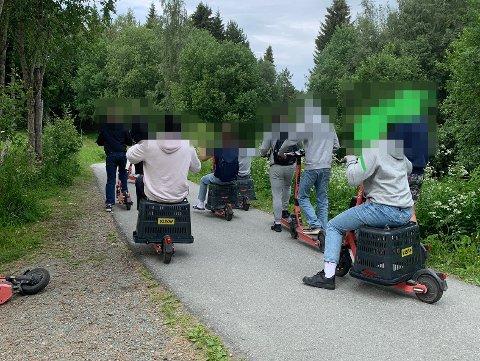 Denne gjengen ble fotografert på Tiller mandag av en beboer som ikke er så glad for å ha fått elsparkesyklene i nabolaget.