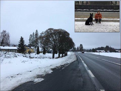 DRAMATISK: Familiehunden Faust forsvant fra hjemmet her ved E16 på Skarnes. Midt i leteaksjonen måtte Mohammed Maazouzi og kona Rajae kjøre til sykehuset. Foto: Martha-Lill Nordby Hansen / privat