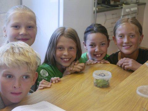 Nytt insekt: f.v. Olav Hernes Lin, Ida Grønstein, Mari Miland, Kristin Røysland og Kaia Kjus Rue viser stolt fram et helt nytt insekt de fant i klasserommet. De har gitt det navnet «Konkav» og har planer om å levere det til en insektbank.