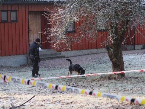 HUNDER: Fredag ettermiddag ble søkt med hunder utenfor boligen på Moenskogen.