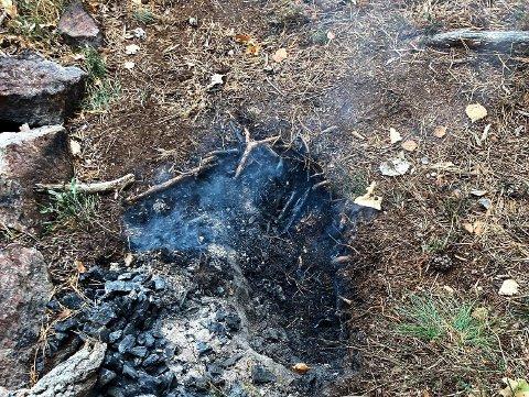 BRANN: Det brant godt nede i torva under et forlatt bål i turområdet ved Karlsvika i Tønsberg onsdag ettermiddag.