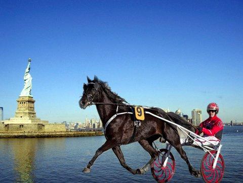 STARTKLAR: B.B.S. Sugarlight er lørdag klar for sitt andre VM-løp i New York.