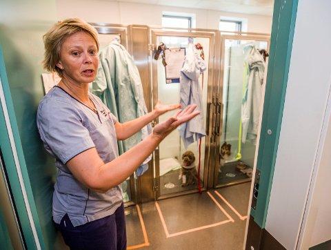 Hektisk: Det er travelt på Fredrikstad Dyrehospital når det er diarétiden på året. Veterinær Martine Lund Ziener sier det er mange engstelige hundeeiere som ber om råd.
