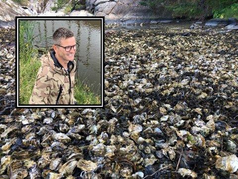 Kristian Lier, daglig leder i Norwegian Shores, leverer sjømat til flere store gourmetrestauranter i Norge, på den måten er han med på å holde bestanden av stillehavsøsters nede.