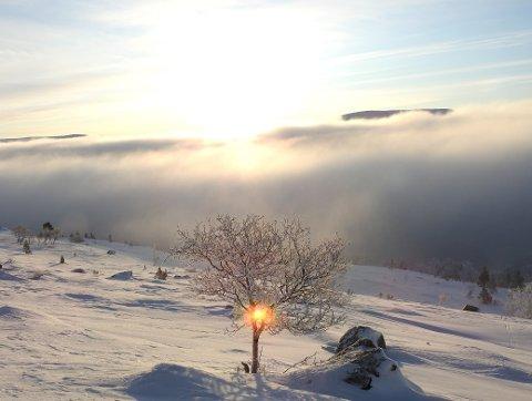 SOLSNU: Vintersolverv søndag med mange magiske øyeblikk.