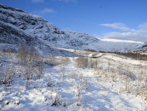 Utvikling: Planlegg nytt skianlegg, hytter og leilegheiter i dette området. Bilda vart tatt i november, så snømengda har endra seg.