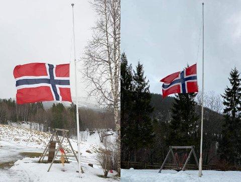 Flere valgte å flagge på halv stang da det ble kjent at kommunestyret i Vefsn hadde vedtatt å legge ned skolen i Elsfjord.
