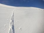Per 16 februar er det sør i landet det faller mest snø.