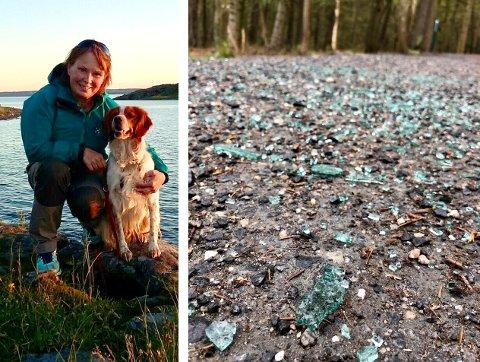 BEKYMRINGSFULLT: Vigdis Monsen og hunden Fenrik gikk på tur tirsdag morgen da de blant annet kom over masse glasskår som lå knust på turstien på Alby. Bildet til venstre er fra en tidligere, og langt mer hyggelig anledning.