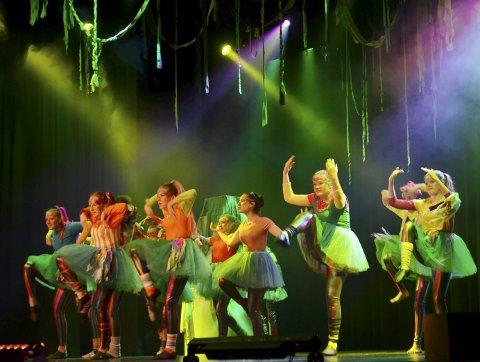 FUGLEDANS: Dyktige dansere bandt forestillingen sammen med avansert fugledans.FOTO: Hans Olav Granheim