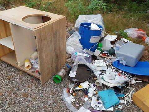 SØPPEL: Noen har kastet fra seg et lass med søppel langs fylkesveg 24.