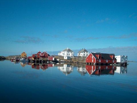 Vi er gode vertskap for besøkende og tar de rundt på reise, øyhopping på Nordmøre, og blir gjerne litt forundret over hva besøkende ser.
